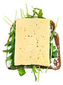 Rye bread, cheese and fresh arugula sandwich — Stock Photo