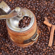 Постер, плакат: Retro manual coffee mill on roasted beans