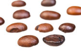 Rows from roasted coffee beans — Stock Photo