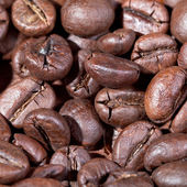 Roasted coffee beans macro shot — Stock Photo