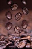 Falling roasted coffee beans on coffee background — Stock Photo