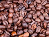 Wielu palone ziarna kawy — Zdjęcie stockowe