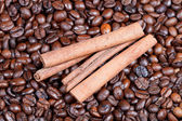 Cinnamon bark on roasted coffee beans — Stock Photo