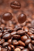 Falling beans and dark roasted coffee — Stock Photo