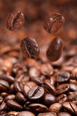 Four falling beans and dark roasted coffee — Stock Photo