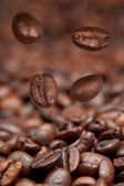 Four falling beans and roasted coffee — Stock Photo