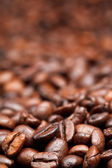Light roasted coffee beans background — Stock Photo