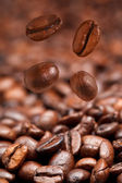 Four falling coffee beans and roasted coffee — Stock Photo