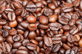 Light roasted coffee beans close up — Stock Photo