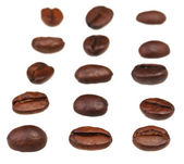 Rows and columns from roasted coffee beans — Stock Photo