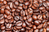 Many light roasted coffee beans — Stock Photo