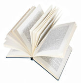 Open book isolated on white background — Stock Photo