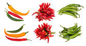 Set of hot spicy pepper pods — Stock Photo