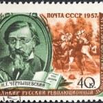 Постер, плакат: Famous russian writer Chernyshevsky