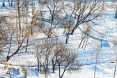 Above view of snowy urban park in winter — Stock Photo
