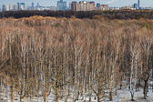 Cityscape with spring thawing in park — Stock Photo