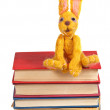 Felt soft toy rabbit sits on stack of books — Stock Photo #43136069