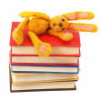 Felt soft toy rabbit lies on stack of books — Stock Photo #43136083