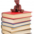 Felt soft toy bear sits on books — Stock Photo #43136097