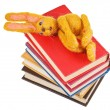Top view of felt toy rabbit lies on books — Stock Photo #43136109