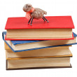 Felt soft toy lamb on stack of books — Stock Photo #43136127