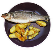 Top view of fish and fried potatoes on plate — Stock Photo
