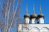 White birch and white walls of russian church — Stock Photo