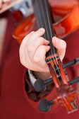 Girl playing violin - chord on fingerboard — Stockfoto