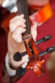 Girl plays on fiddle - chord on fingerboard — Stok fotoğraf