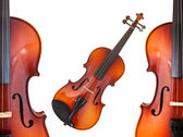 Halfs and full classical modern violins — Stockfoto