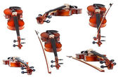 Set of classical modern violins isolated — Stock Photo