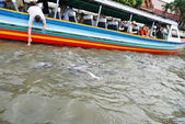 River tour in boat on Chao Phraya river in Bangkok — Stock Photo