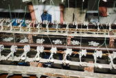 Raw silk manufacture by traditional manner — Stock Photo