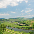 View of Moselle valley and Mosel river — Stock Photo #50350171