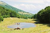 Rural view in Monte Baldo mountains, Italy — Stock Photo