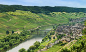 Town Zell and Moselle river, Germany — Stock Photo
