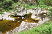 River in mountain national park Picos de Europa — Stock Photo