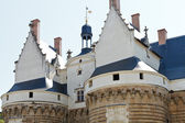 Towers of Castle of the Dukes of Brittany, Nantes — Stockfoto