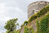 Pinion walls in Angers Castle, France — Stock Photo
