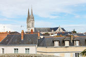 Saint Maurice Cathedral and roofs in Angers — Stockfoto
