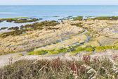 Costa del océano atlántico en la península de guerande — Foto de Stock