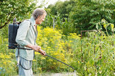 Old man spraying of pesticide on country garden — Stock Photo