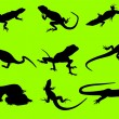 Vector silhouettes of a lizard — Stock Vector