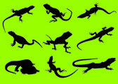 Vector silhouettes of a lizard — Stock Vector
