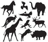 Animals silhouette — Stock Vector