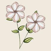 Carnation design — Stock Vector