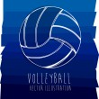 Volleyball — Stock Vector #27647859