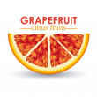 Grapefruit citrus fruit  — Stock Vector