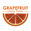 Постер, плакат: Grapefruit citrus fruit