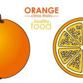Fruta cítrica laranja — Vetor de Stock